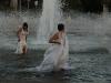 Peregrine: Balboa Park